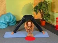 Смотреть онлайн бесплатно Дога-йога. Выпуск 1