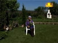 Смотреть онлайн бесплатно Сроки посадки лука